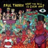 Paul Thorn - What The Hell is Goin On?